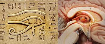 eye of horus What the Twelve Tribes of Israel and the Tabernacle Really Symbolize