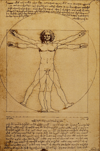 Vitruvian Man Bible